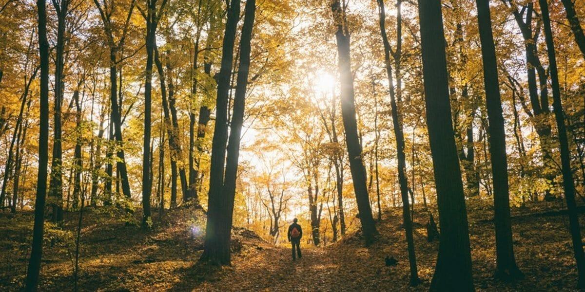 Herbsturlaub im Kleinwalsertal